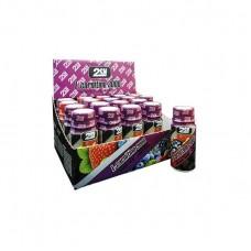 2SN L-carnitine 3000 60мл, Лесные ягоды
