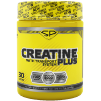 STEEL POWER Creatine Plus 300г, Фьюри (мята-корица)