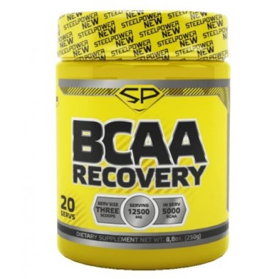 STEEL POWER BCAA RECOVERY 250г, Апельсин