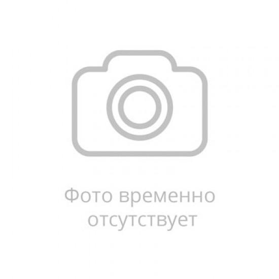 GENETICLAB BCAA Powder пробн. 5 г, Экзотик
